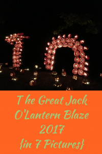 The 2017 Great Jack O'Lantern Blaze in 7 pictures.