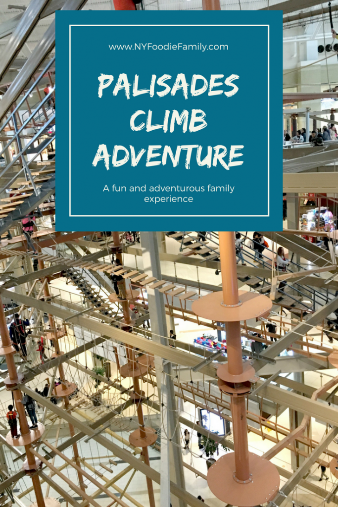A fun and aventurous family outing at the Palisades Center mall.