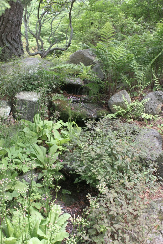 Waterfall Garden at the Hammond Museum and Japanese Stroll Garden.
